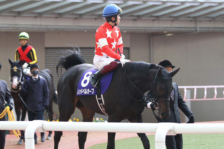 「東京サラブレット」2020年募集馬のオススメはこれ!